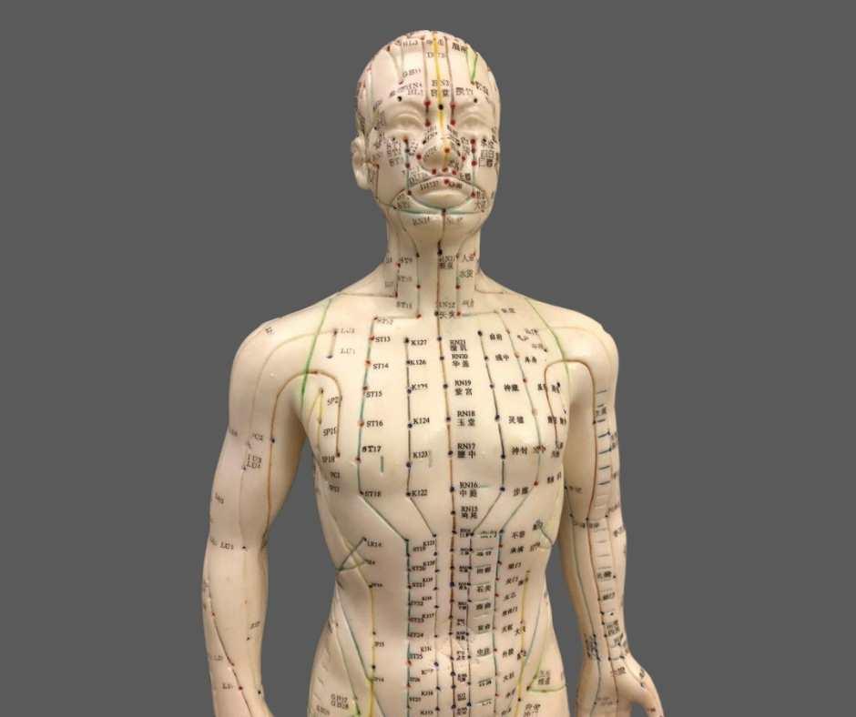 acupunctuur meridianen